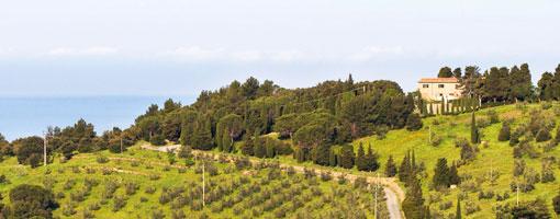 Agriturismo Alberelli, Nibbiaia, Livorno, Toscana